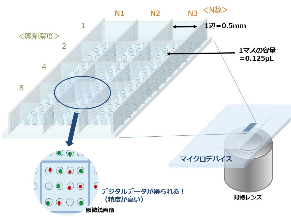 薬剤スクリーニング_マイクロデバイス